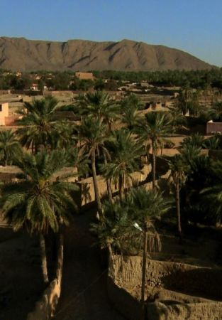 Figuig, seule face au désert